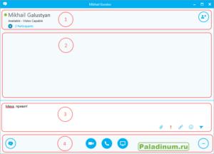 Skype For Business. Окно беседы. Разделы.